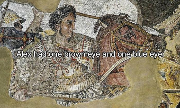 Interesting Facts You Need To Know About Alexander The Great