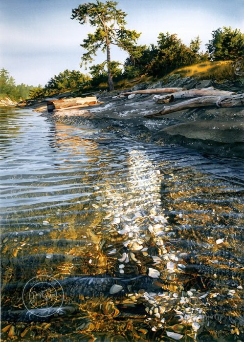 Realistic Watercolor Paintings That Will Make Your Jaw Drop