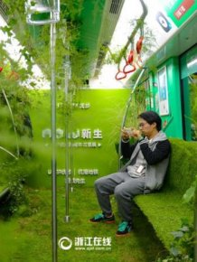 A Chinese Subway Car Has Been Turned Into A Green Forest
