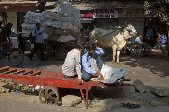 A Different Side Of Everyday Life In India