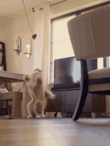 Gifs That Prove Explosions Make Everything Look Epic