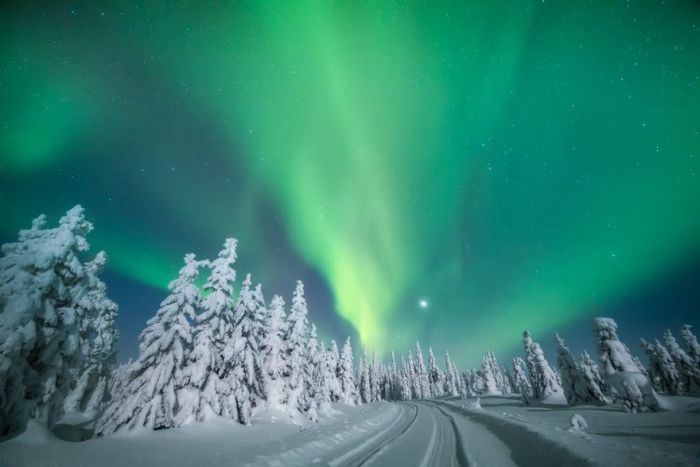 This Is Why Lapland Is The Most Magical Place To Celebrate Christmas