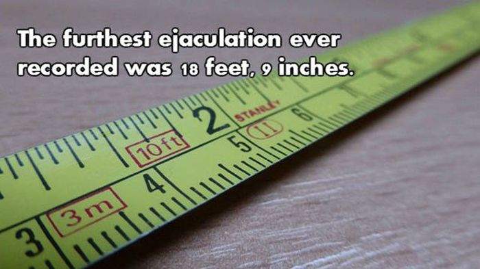 Prepare To Be Blown Away By These NSFW Facts