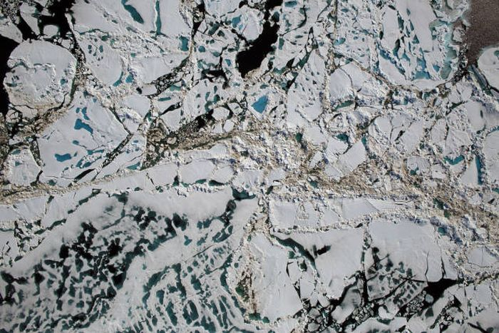The Most Astonishing Science Photos Of 2016, part 2016