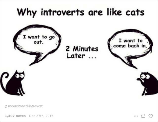 What Life Is Like If You're An Introvert According To Introverts