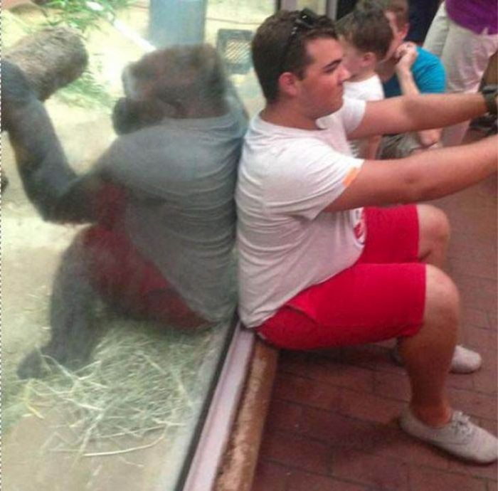 Hilariously Misleading Photos That Will Make You Look Twice