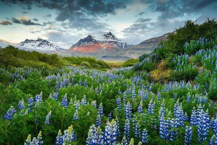 Breathtaking Nature Pics Taken In Iceland