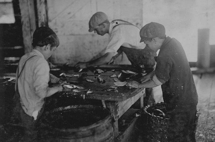 Before Child Labor Laws Kids Worked For A Dollar A Day