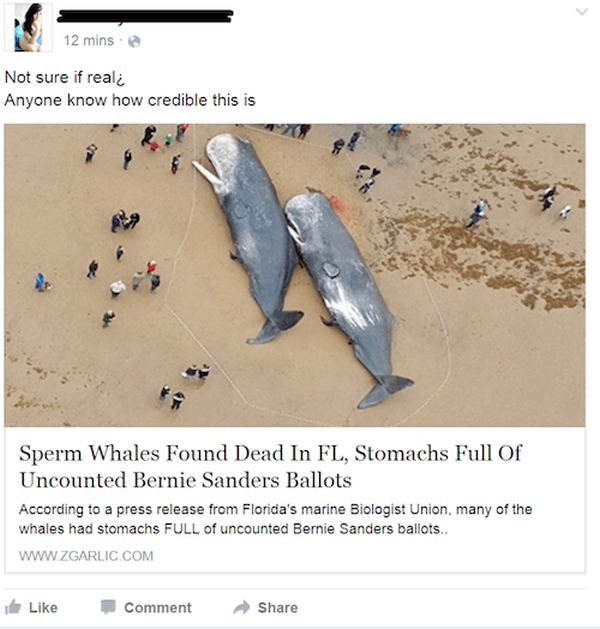 The Dumbest Facebook Posts From The Year 2016, part 2016