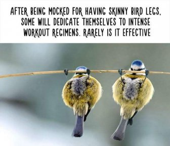 Little Known Animal Facts That Will Surprise You