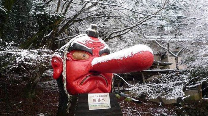 Japanese Tengu Gets Fixed With A Bandaid