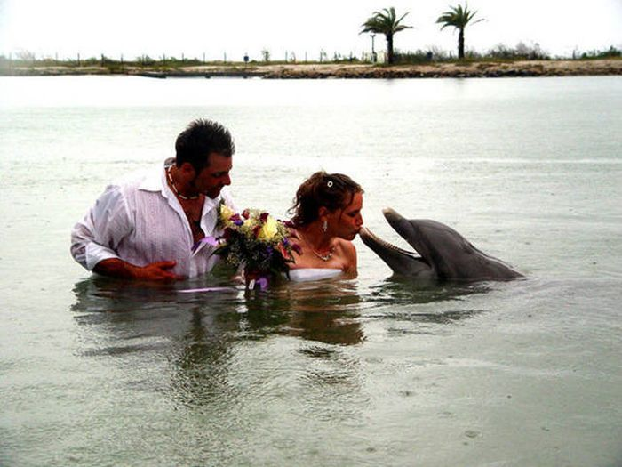 Amusing Wedding Photos That Will Make Your Day