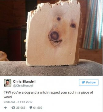 The Funniest Tweets You're Going To See This Week