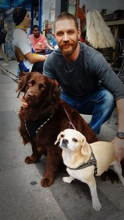 Tom Hardy Really Seems To Love Dogs