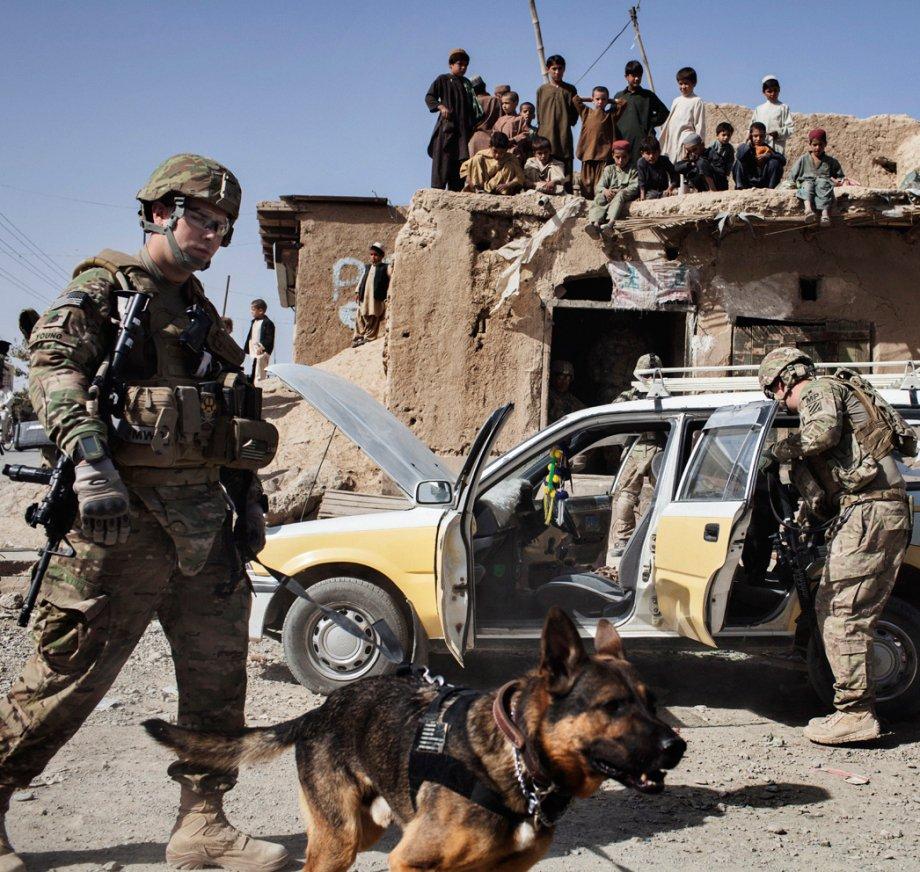 Dog soldiers - man best friend