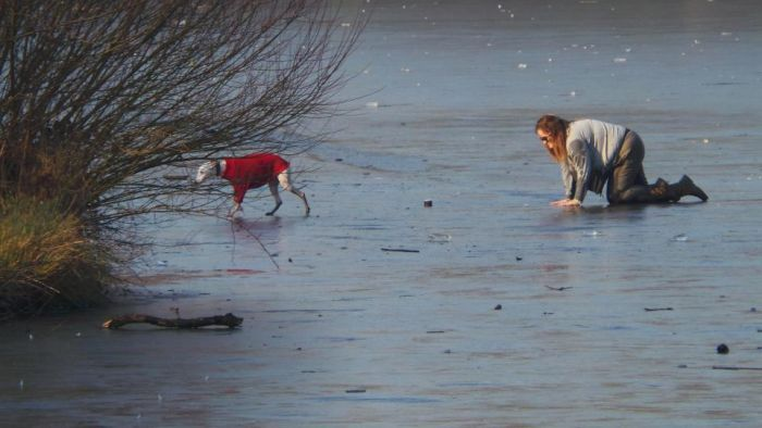 Brave Woman Rescues Dog Who Fell Through The Ice