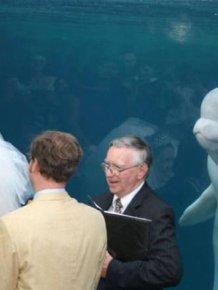 Beluga Whale Attends Wedding, Sparks Photoshop Battle