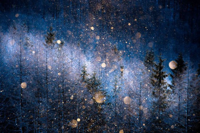 Stunning Photos From The Sony World Photography Awards