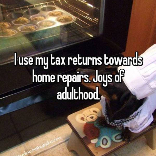 Tax Returns Aren't Something People Ever Spend Wisely