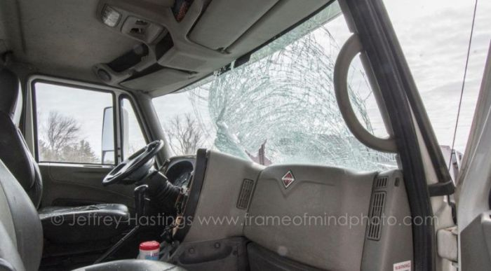 Turkey Goes Flying Through The Windshield Of A Truck