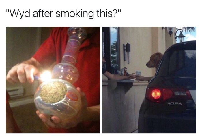 Hilarious After Smoking Memes That Will Crack You Up Fun