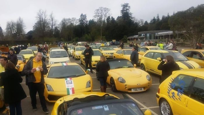A Parade Of Yellow Cars
