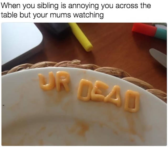 Memes You Should Send To Your Sister Right Away