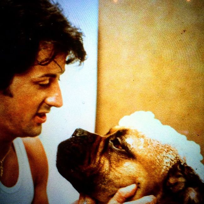 Sylvester Stallone Shares Touching Tribute To His Old Dog