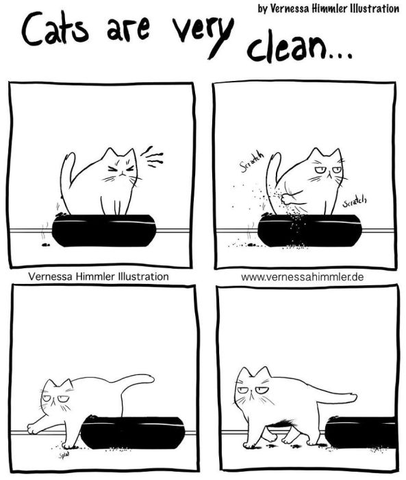 funny comics about life with two cheeky cats fun
