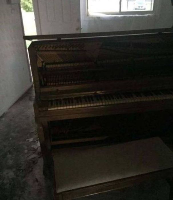 Neighbors Discover Horrific Abandoned Duplex