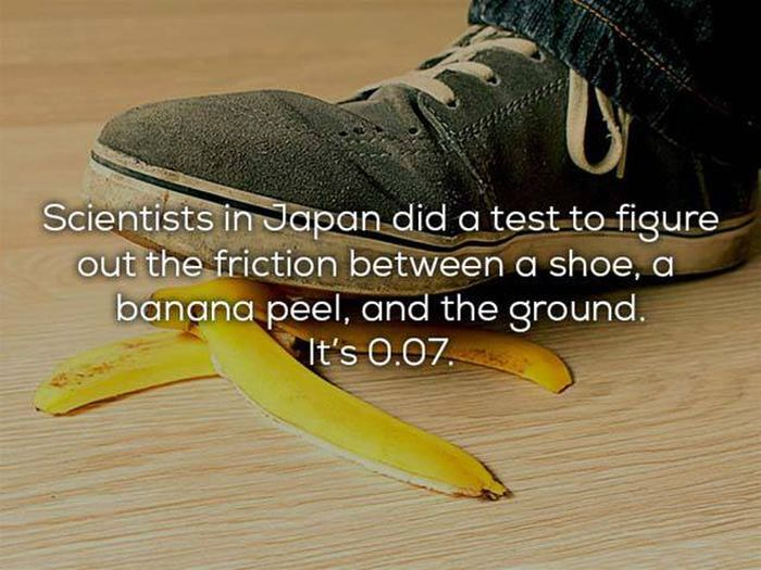Science Facts That We All Need In Our Lives