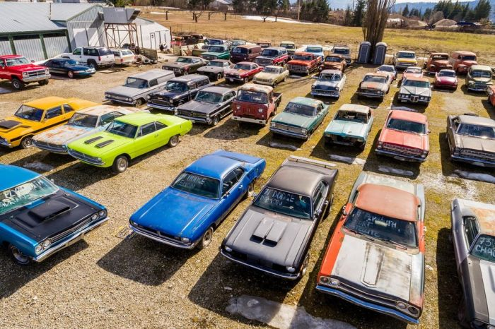 Canadian Sells Farm With A Collection Of 340 Rare Cars