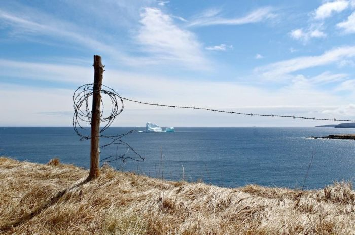 Stunning Photos Of Alley Of The Icebergs In Ferryland