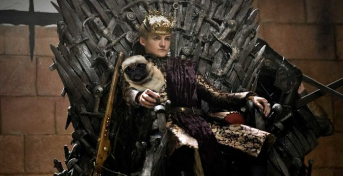 King Joffrey With A Pug Gets The Photoshop Battle Treatment
