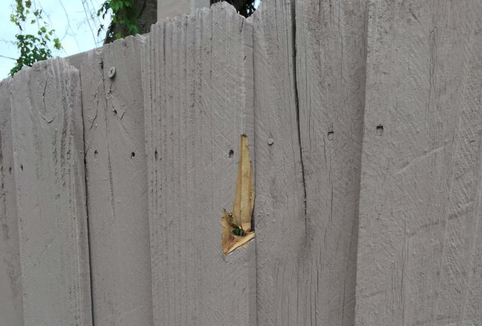Stray Bullet Hits The Wall Three Feet From Where His Fiancee Sleeps