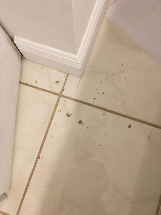 Stray Bullet Hits The Wall Three Feet From Where His Fiancee Sleeps