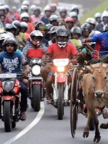 Here's What Everyday Life In Sri Lanka Looks Like
