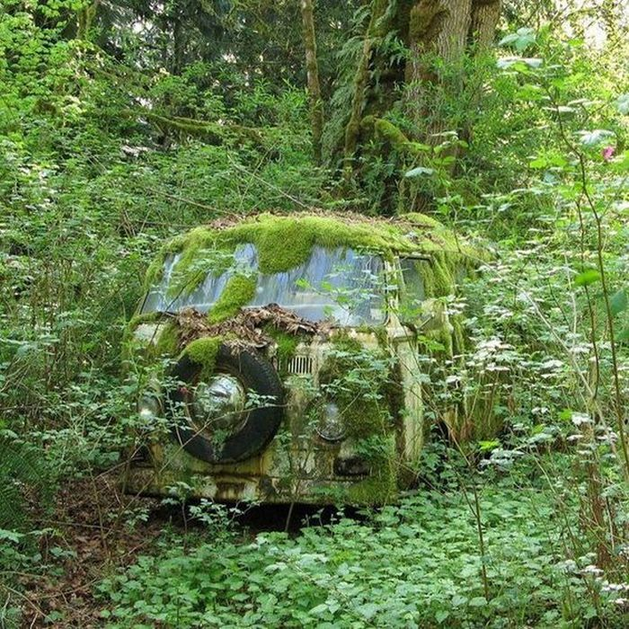 Chilling Photos From Abandoned Places Around The World