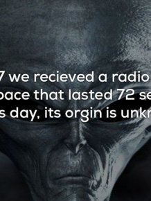 Creepy Facts That Will Send Chills Down Your Spine
