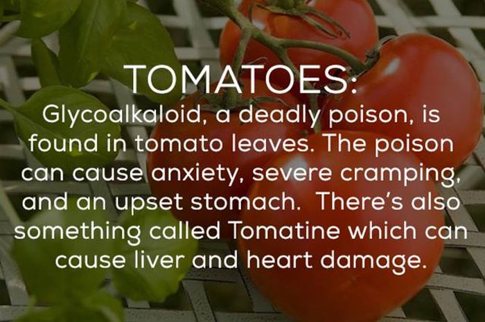 Be Careful Because There's A Bunch Of Ways Your Food Can Kill You