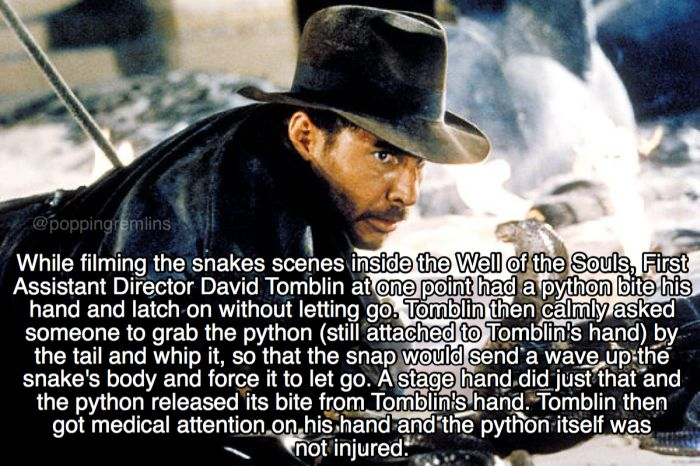 Exciting Facts About Raiders Of The Lost Ark