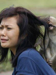 When Animals Face Off Against Women Animals Always Win
