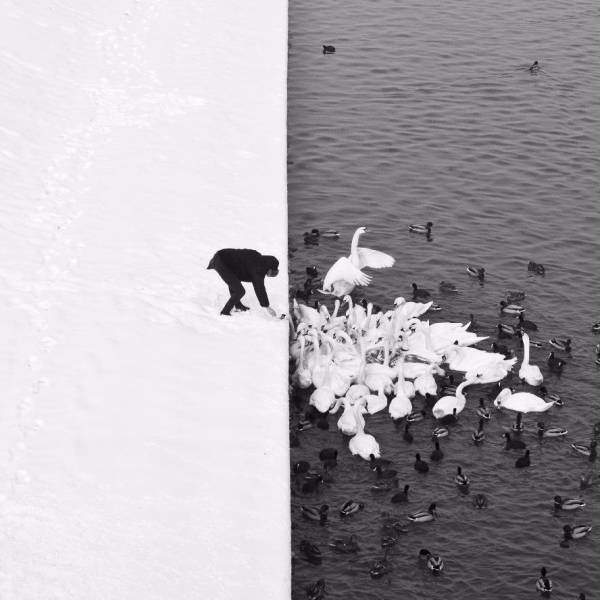 Photos That Tell A Story With No Words