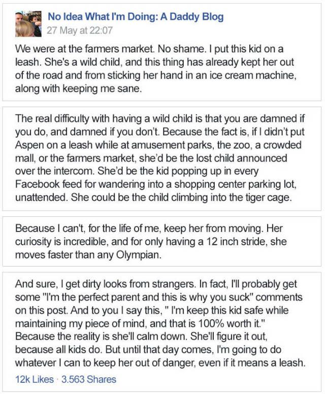 Dad Takes Parenting To A Wild Level And Internet Is On Board With Him