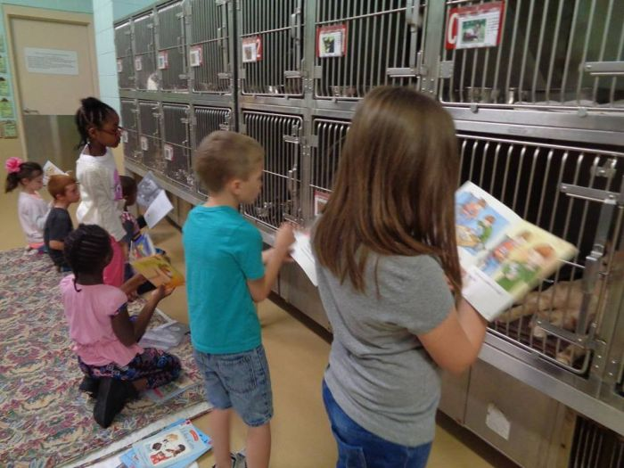 Children Reading To Shelter Dogs Is Adorable