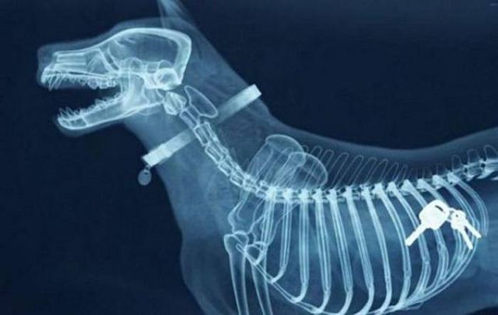 When X-Rays Reveal What You Don't Want To See