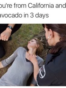 Memes That Will Get You Laughing In No Time