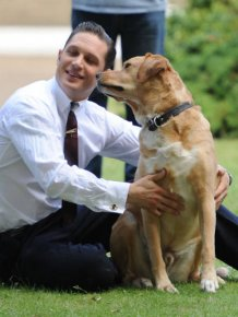 Tom Hardy Touched The Internet's Soul With A Eulogy He For His Dog