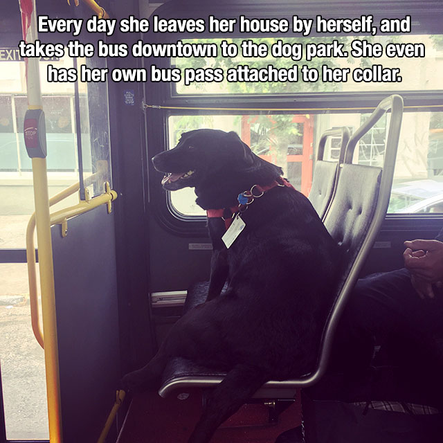 Heartwarming Reminders That Life Is Beautiful