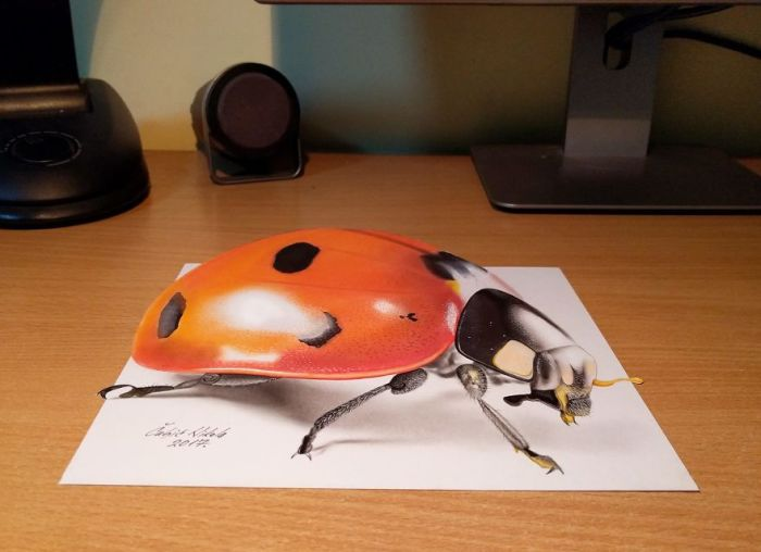 3D Drawings Created To Confuse People
